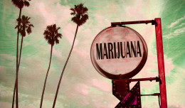 News and Views: Pot Economy in California