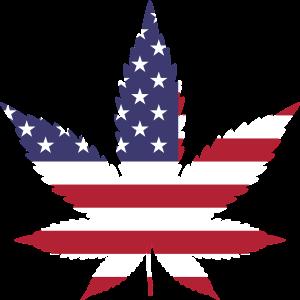 Southern-California-Professional marijuana